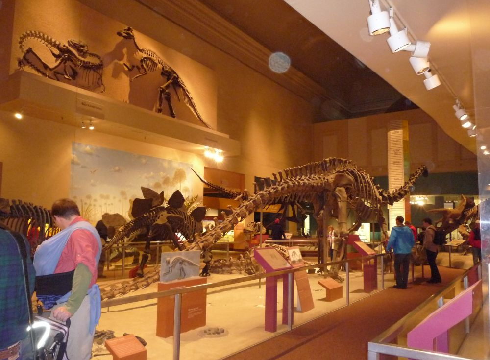 Library of Congress_dinosaurs
