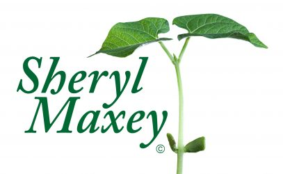 SherylMaxey.com