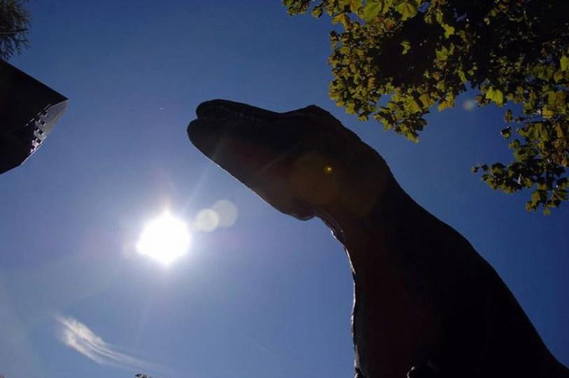 T-Rex by Ayendy Bonifacio