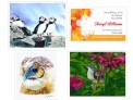 A. Birds: Puffins, Owl, Hummingbird