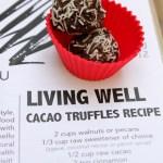 Vegan Raw Cacao Truffles | ShesCookin.com