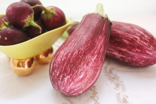 Grafitti Eggplant, Indian Eggplant