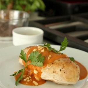 Chef Rick Bayless Chicken Mole | ShesCookin.com