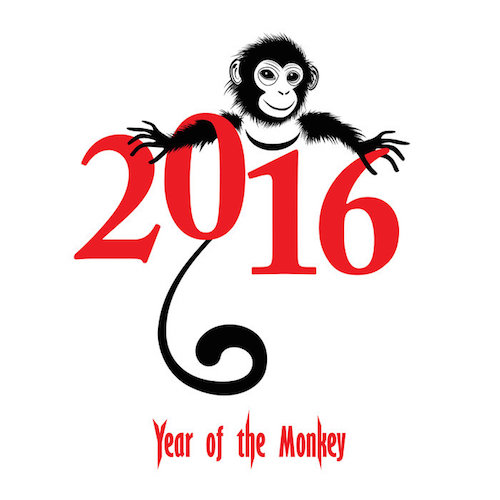 Year of the Monkey - Chinese New Year 2016