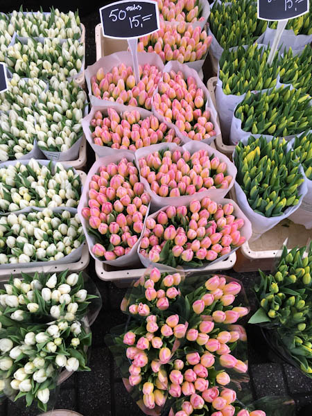 Tulip Market - Amsterdam | ShesCookin.com