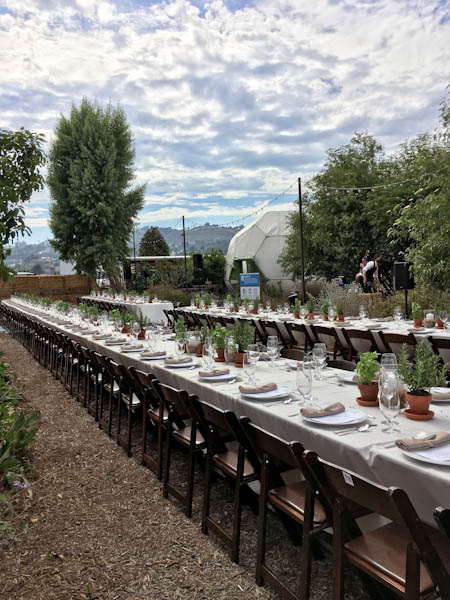 The Ecology Center's Green Feast with Alice Waters   ShesCookin.com
