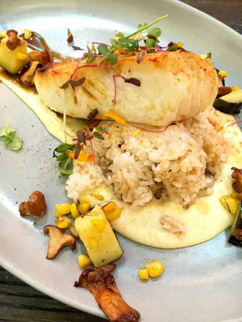 Wild Pacific Halibut | ShesCookin.com