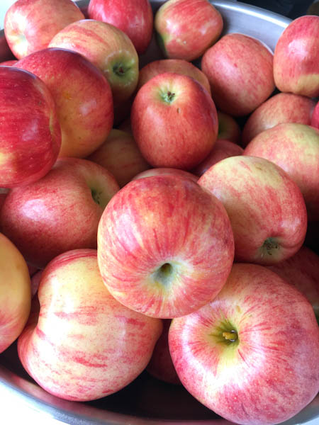 Apples | ShesCookin.com