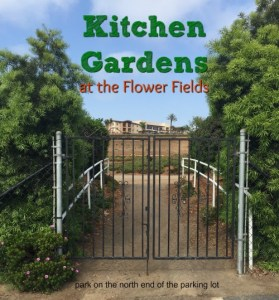 Cooking Classes, Kitchen Gardens at the Flower Fields, Carlsbad, San Diego County