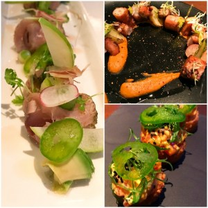 Grilled Octopus with Romesco Sauce, Hamachi Crudo and Ahi Tuna Poppers