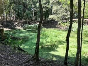 Belize - Caracol reservoir