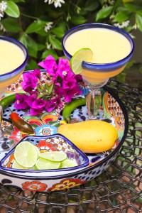 Mango Pineapple Margarita   ShesCookin.com