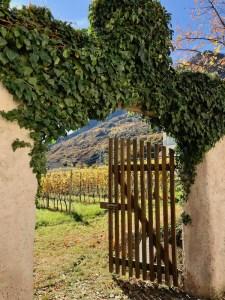 Lake Kaltern-Italy | Suditrol - Alto Adige wine region