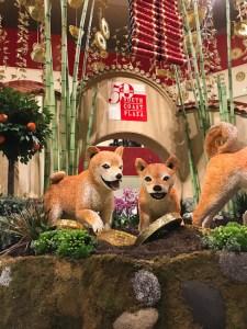 South Coast Plaza Lunar New Year celebration, Year of the Dog