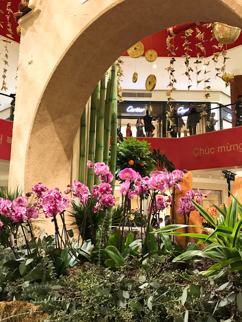 Pink orchids at South Coast Plaza Lunar New Year celebration