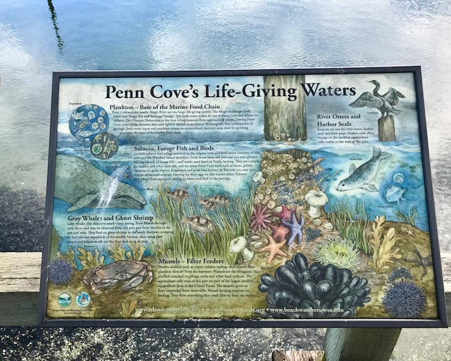 Penn Cove habitat sign