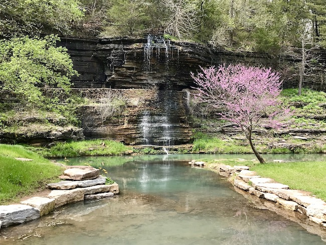 Redbud and dogwood trees during Spring at Dogwood Canyon Nature Park