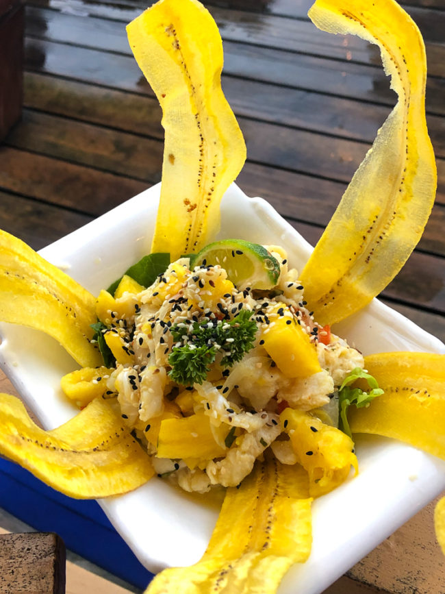 Ceviche with fried plantain chips at Bibi's in Bocas del Toro