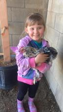 Gertrude is our favorite hen, she's very friendly!
