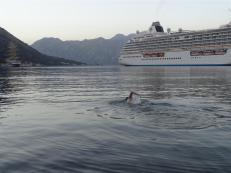 Evening swim, Kotor