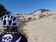 Dunes near Provincetown, Cape Cod