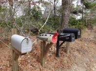 Letter boxs
