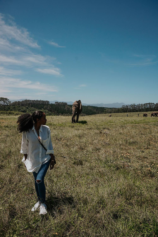 Walking With Elephants |SHESOMAJOR19a
