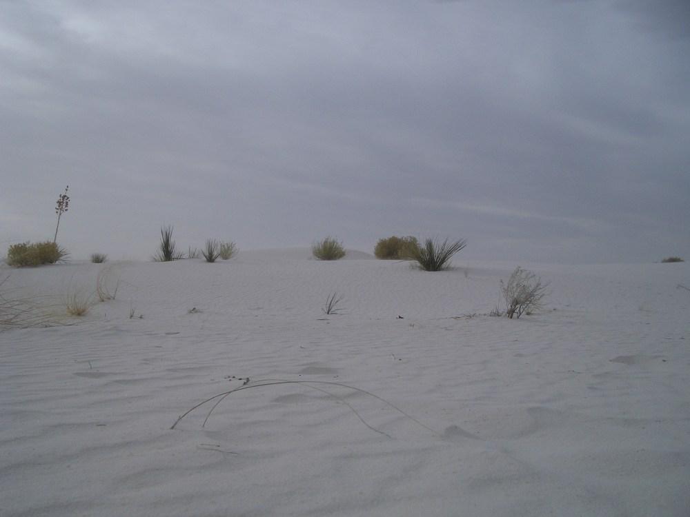 Sandboarding White Sands National Monument and Missile Range (2/6)