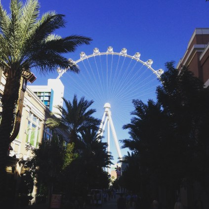 The High Roller from the Street