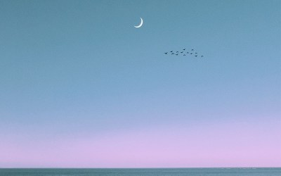 New Moon Solar Eclipse in Cancer: Slowing Down and Finding Clarity