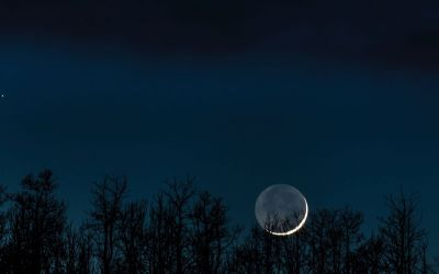 New Moon in Scorpio: Shadow and Transformation