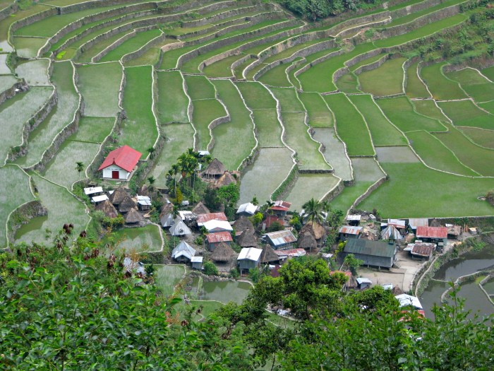 Batad Rice Terraces