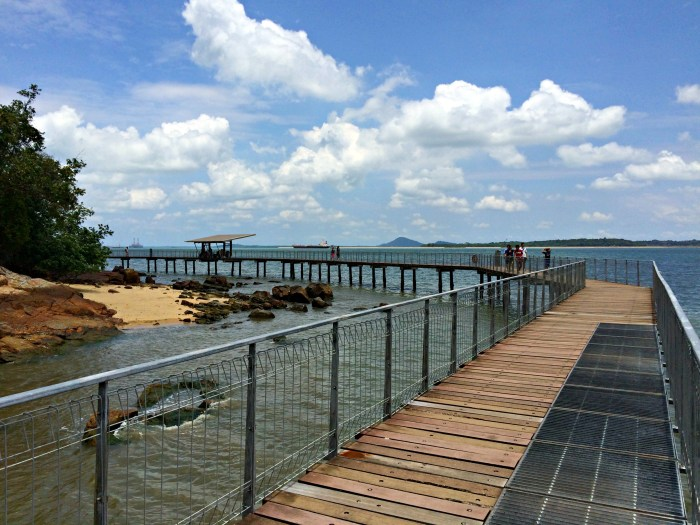 Coastal Boardwalk