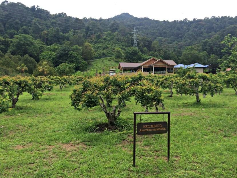 MARDI Agro Farm