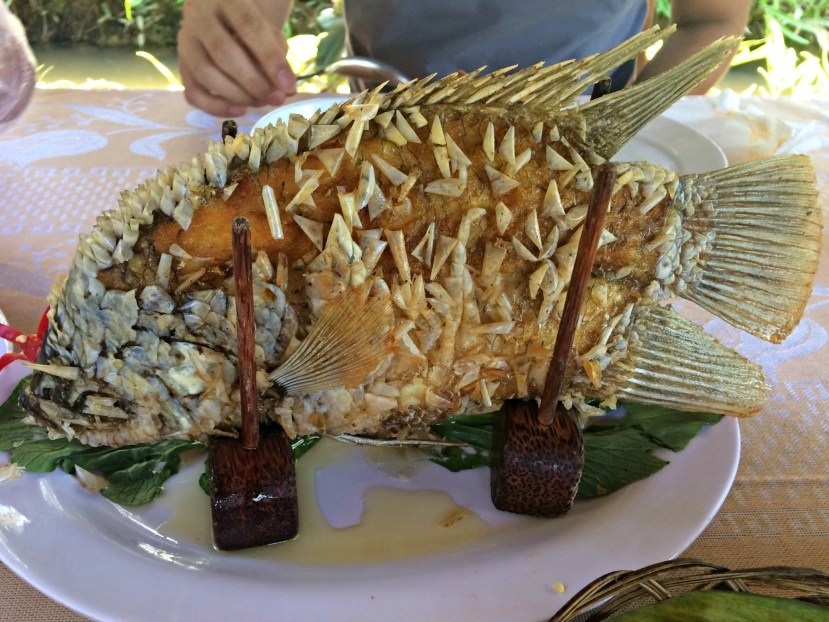 Mekong River - Food