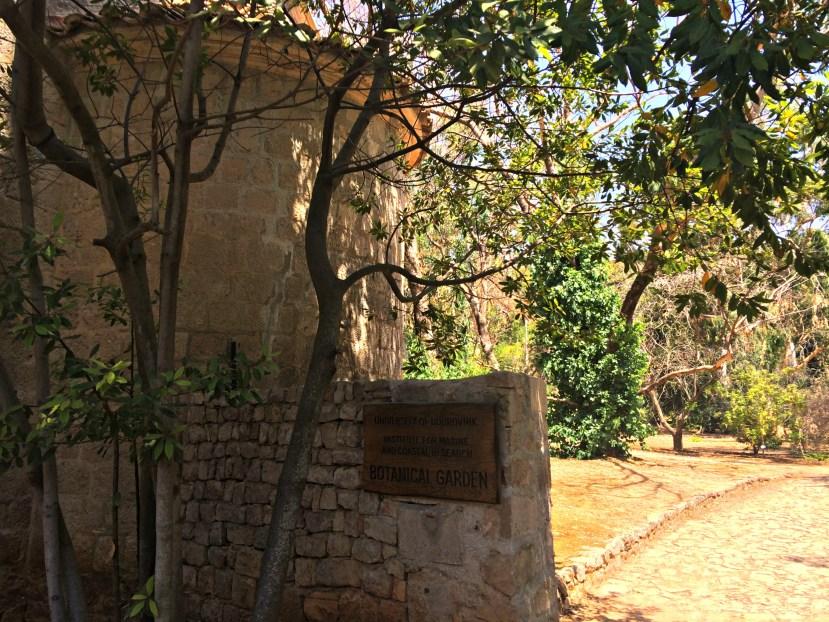 Botanical Gardens on Lokrum