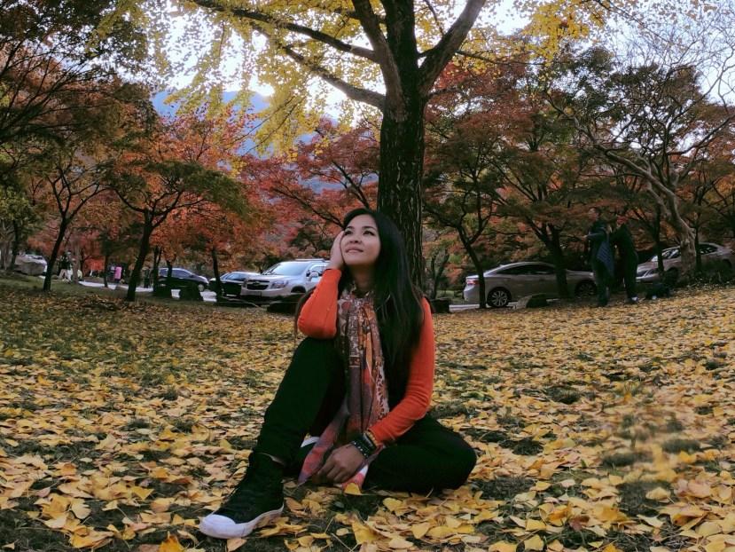 Autumn Views
