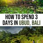 The Perfect 3 Days in Ubud Itinerary for First Timers