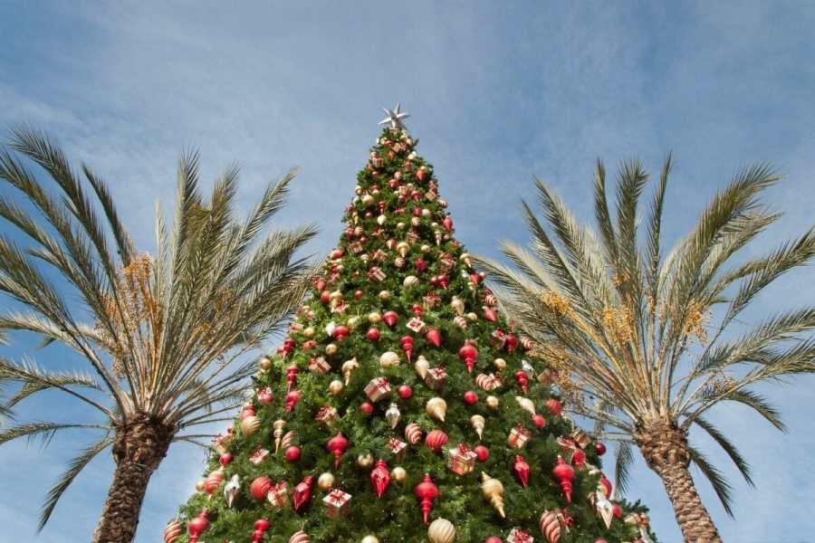 Christmas tree in Palm Springs, USA