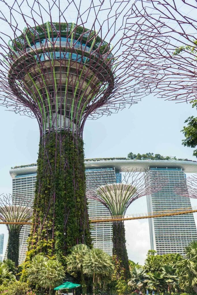 Gardens by the Bay and OCBC Skywalk, Singapore