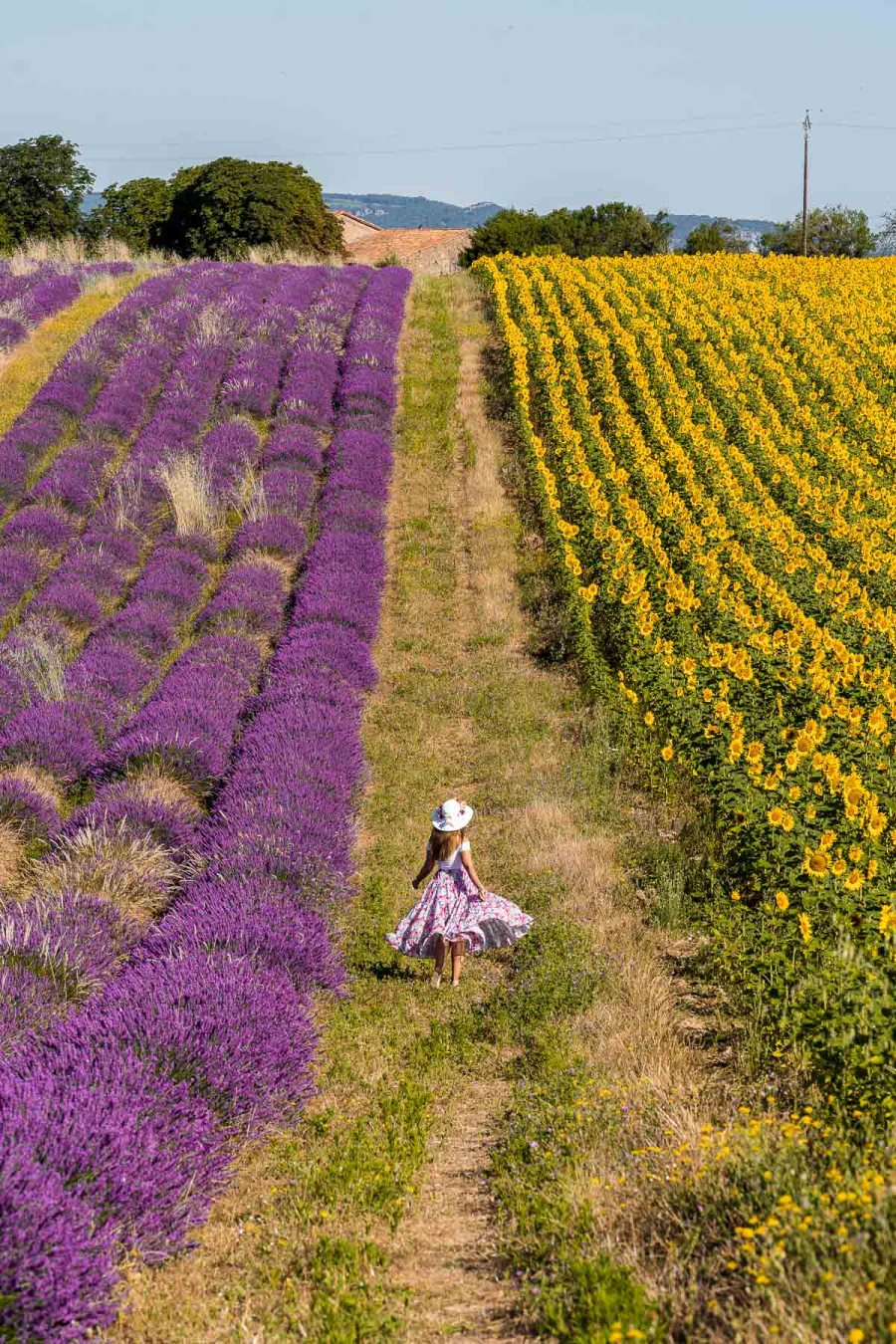 Girl in a pink skirt twirling between the sunflower and lavender fields in Provence