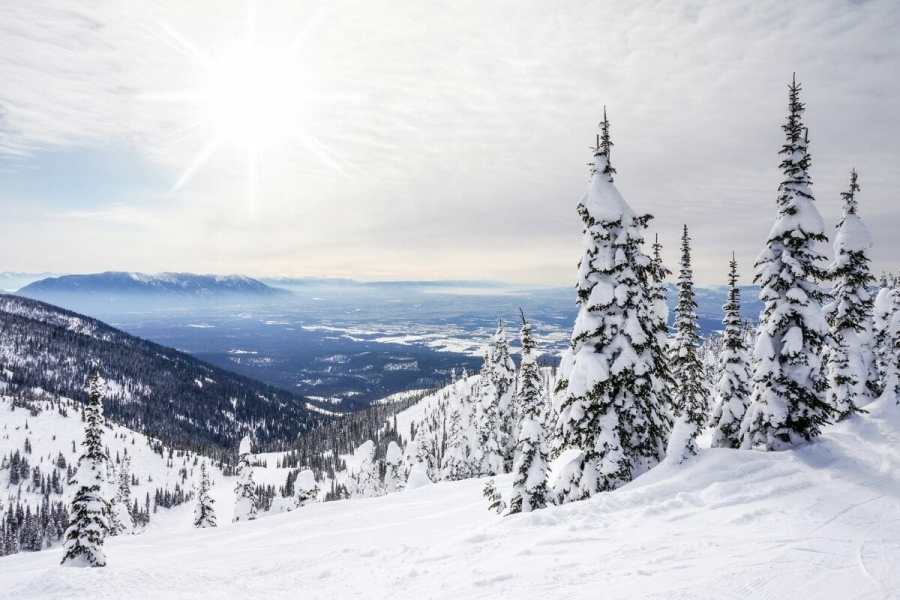 Winter landscape on Big Mountain in Whitefish, Montana, USA