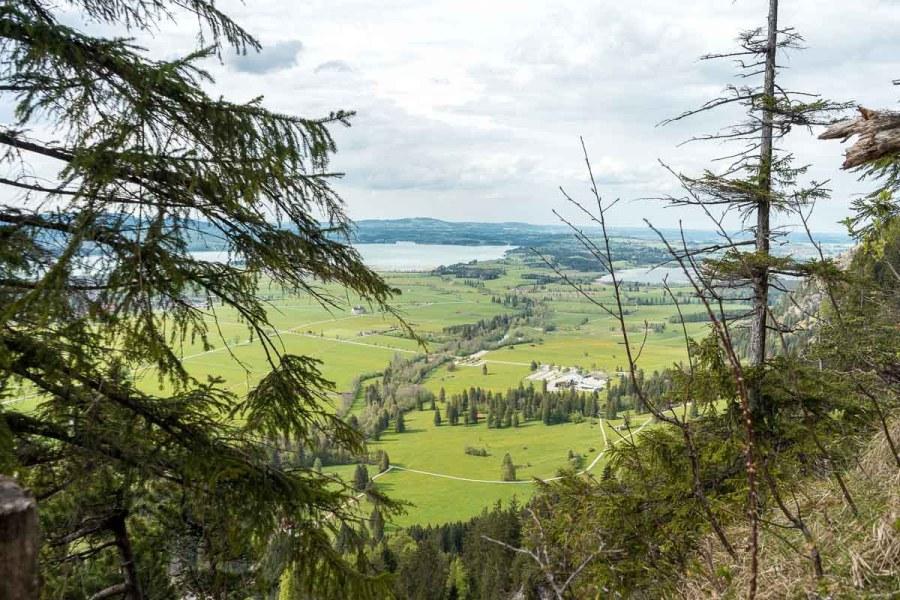 View of the green fields surrounding Neuschwanstein Castle
