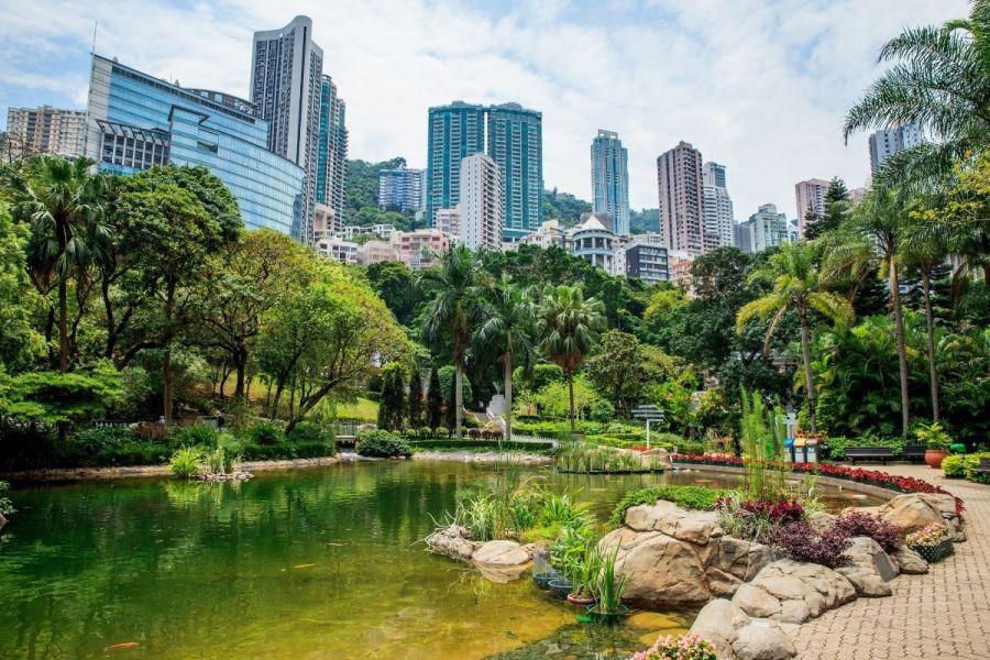 Hong Kong skyline and pond at Hong Kong Park