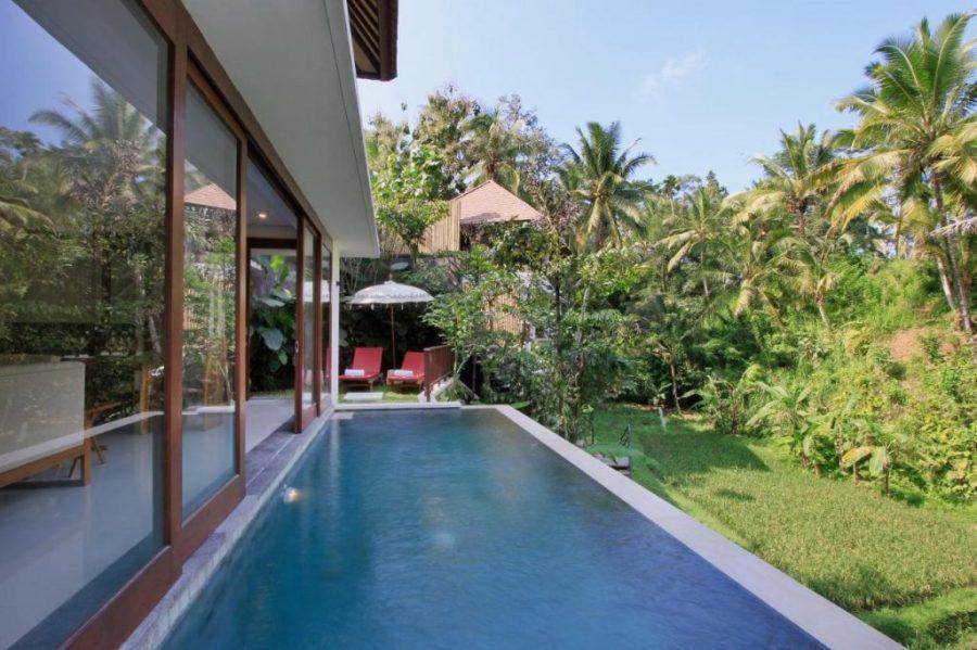 Dedary Kriyamaha a Pramana Experience