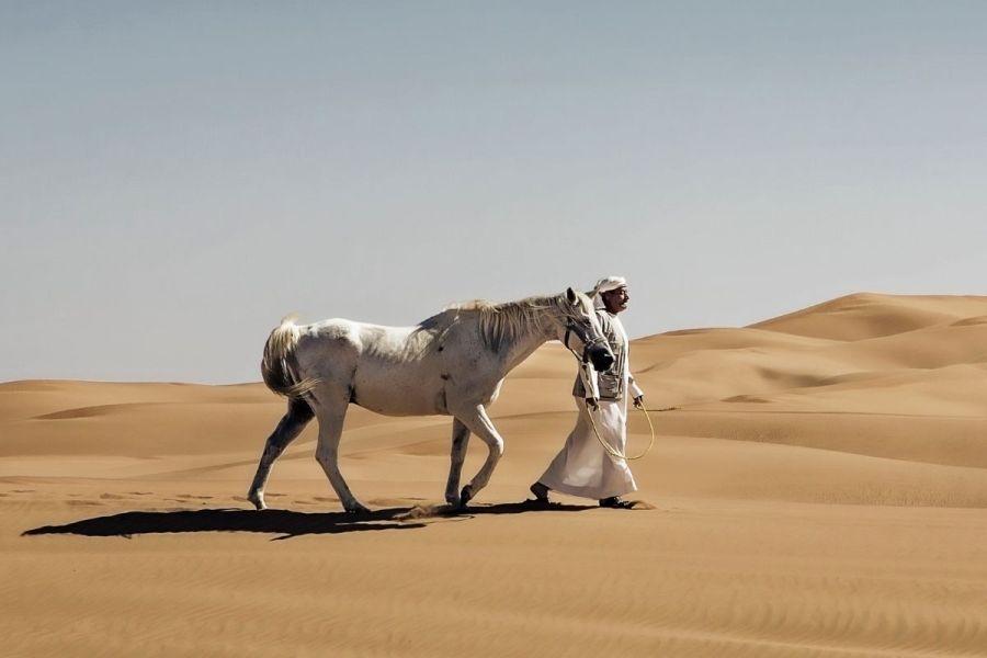 Horse riding in the Dubai desert