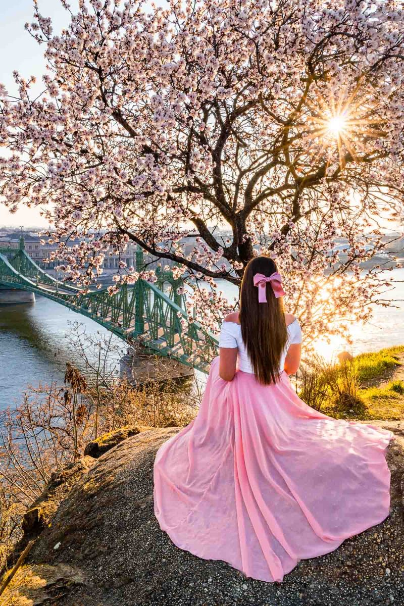 Girl in a pink skirt sitting in front of a flowering almond tree at Gellert Hill in Budapest