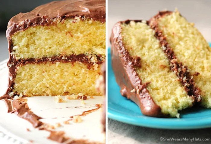 Yellow Butter Cake With Malted Chocolate Buttercream Frosting