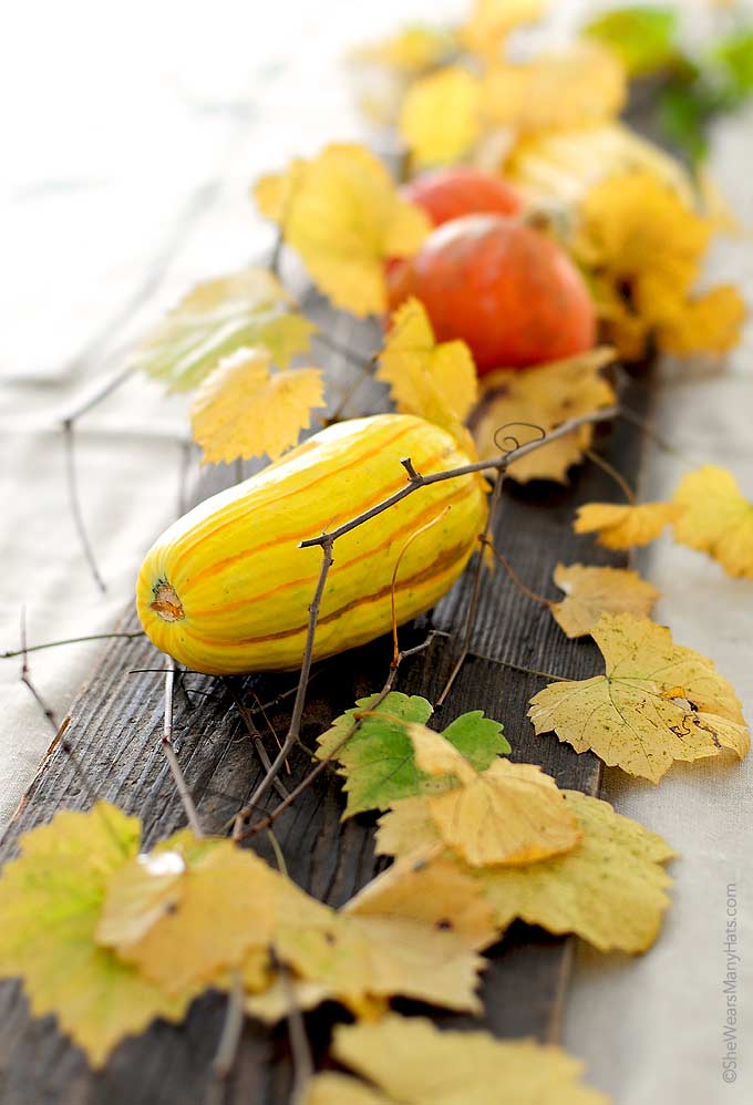 Decorating for Thanksgiving or any fall occasion is easy and inexpensive with these ideas for Easy Fall Decorations.