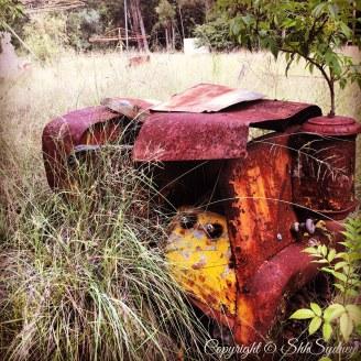 man-made machinery returned to greenery